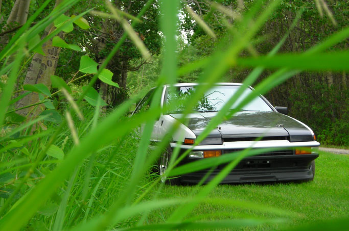 tropical-ae86